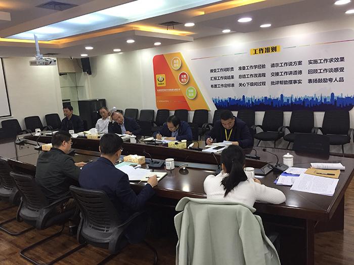集团公司党委(筹备组)领导班子2018年度民主生活会召开
